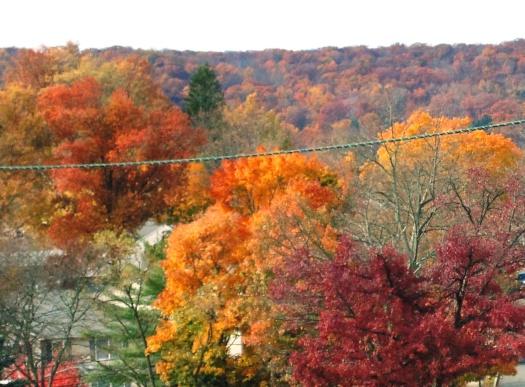 Fall's Call