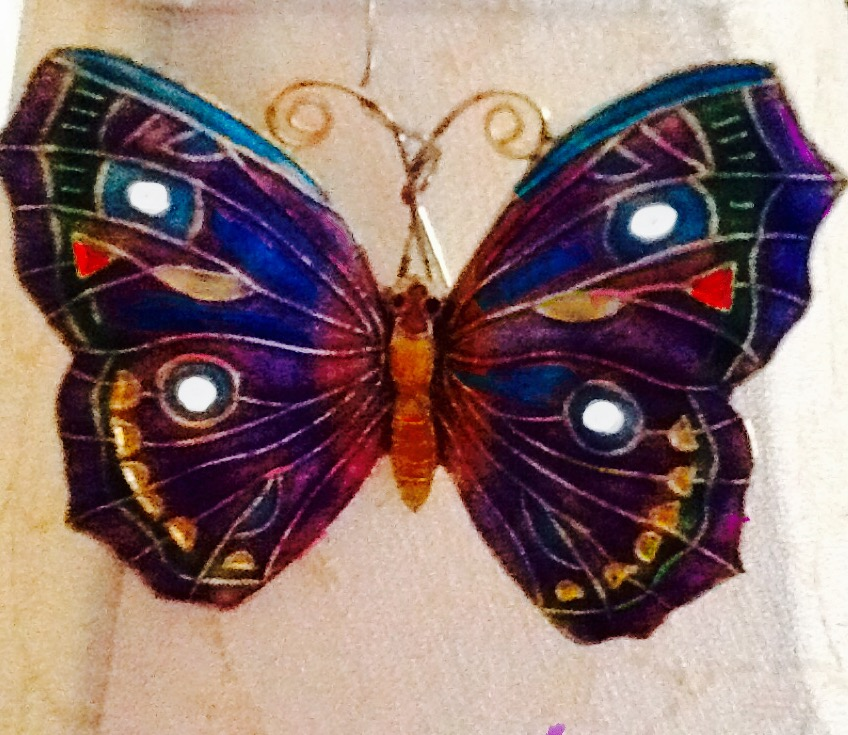 Butterflies are Free 2