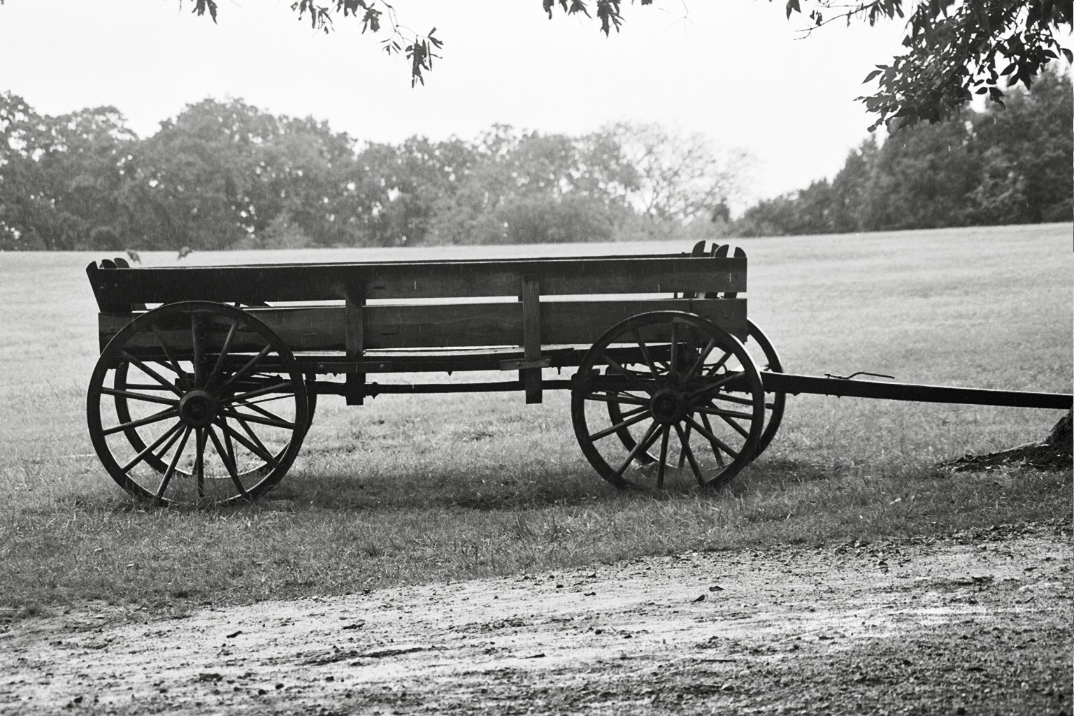 waiting wagon